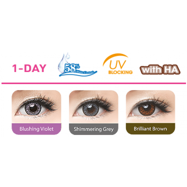 Buy Freshkon 1 Day Colors Fusion Online Lens4vision Com