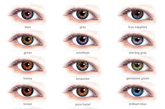 Reviews On Freshlook Colorblends Contacts